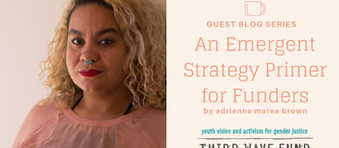 an-emergent-strategy-primer-for-funders_orig